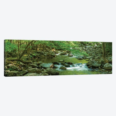 Flowing Creek, Great Smoky Mountains National Park, Tennessee, USA Canvas Print #PIM13974} by Panoramic Images Canvas Art Print