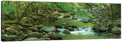 Flowing Creek, Great Smoky Mountains National Park, Tennessee, USA Canvas Art Print