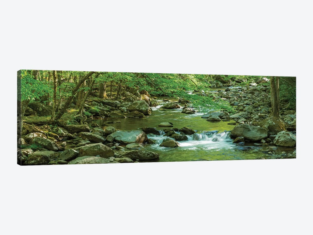 Flowing Creek, Great Smoky Mountains National Park, Tennessee, USA by Panoramic Images 1-piece Canvas Print