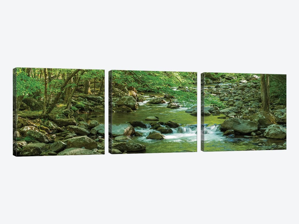 Flowing Creek, Great Smoky Mountains National Park, Tennessee, USA by Panoramic Images 3-piece Canvas Print