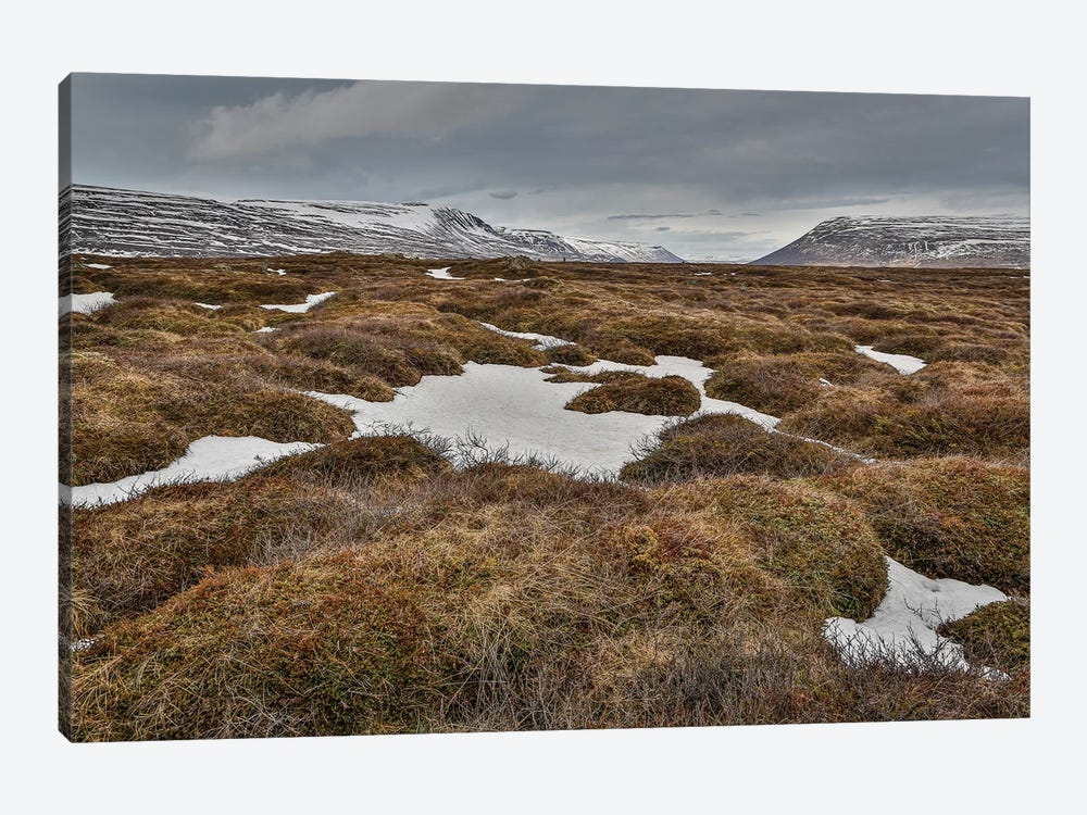 Highland Landscape, Bardardalur, Iceland by Panoramic Images 1-piece Canvas Wall Art
