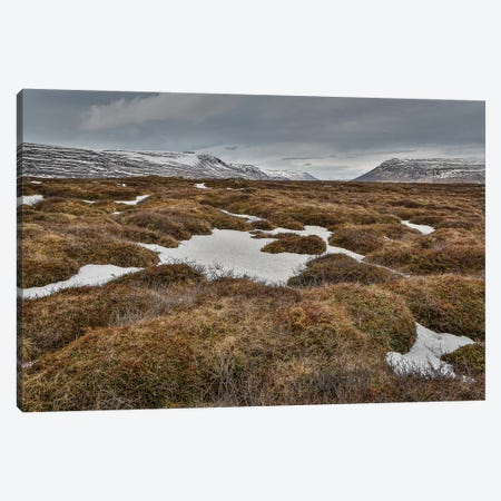 Highland Landscape, Bardardalur, Iceland Canvas Print #PIM14004} by Panoramic Images Canvas Art