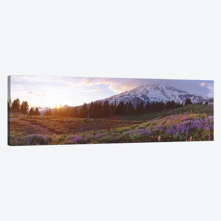 Spring Landscape, Mount Rainier Wilderness, Pierce County, Washington, USA Canvas Print #PIM14094} by Panoramic Images Art Print