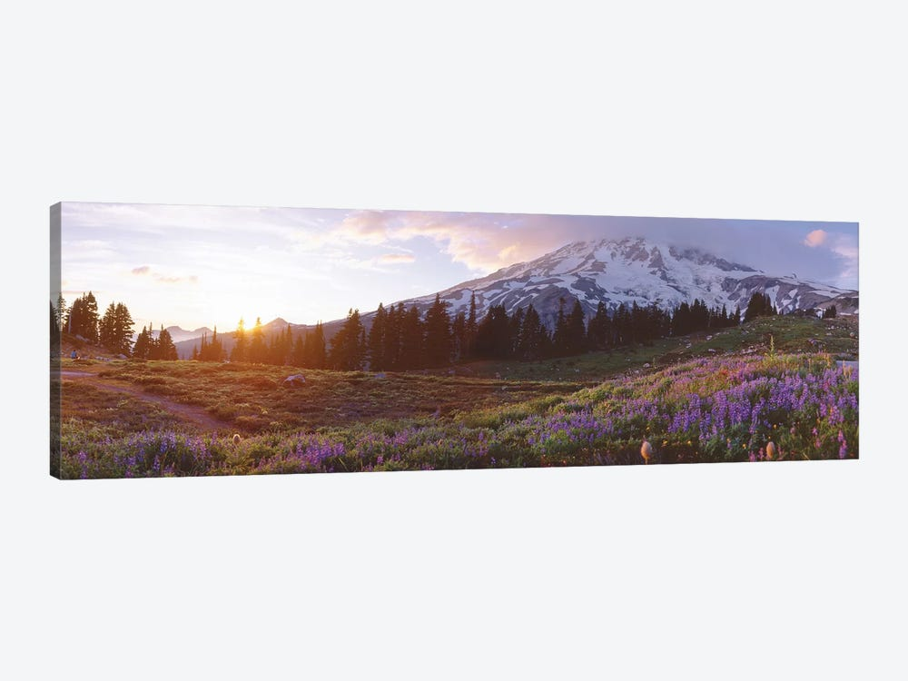 Spring Landscape, Mount Rainier Wilderness, Pierce County, Washington, USA by Panoramic Images 1-piece Art Print