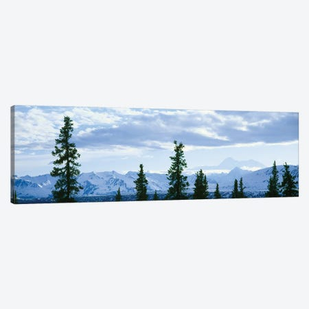 Mountain Landscape, Alaska Range, Denali National Park and Preserve, Alaska, USA Canvas Print #PIM14096} by Panoramic Images Art Print