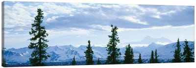 Mountain Landscape, Alaska Range, Denali National Park and Preserve, Alaska, USA Canvas Art Print