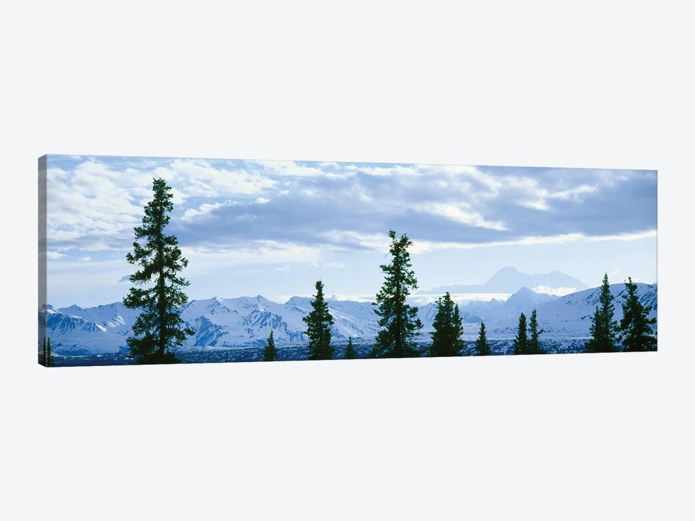 Mountain Landscape, Alaska Range, Denali National Park and Preserve, Alaska, USA by Panoramic Images 1-piece Canvas Art Print