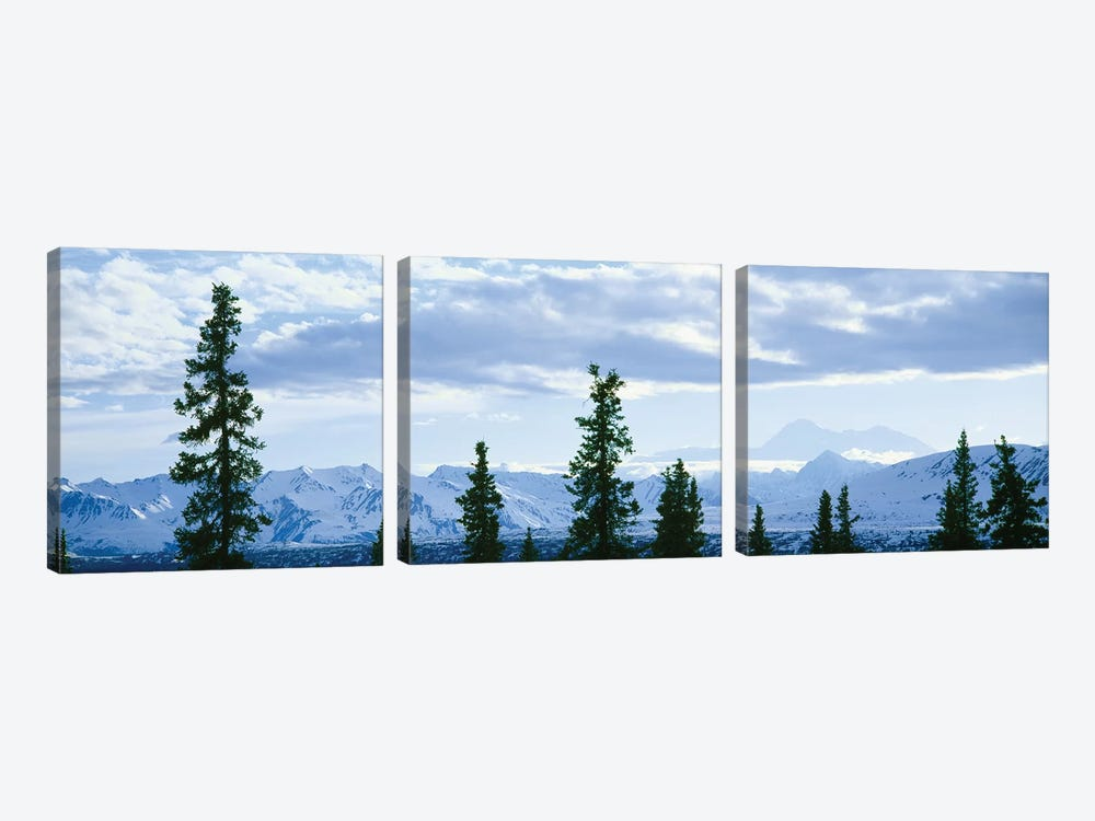 Mountain Landscape, Alaska Range, Denali National Park and Preserve, Alaska, USA by Panoramic Images 3-piece Art Print