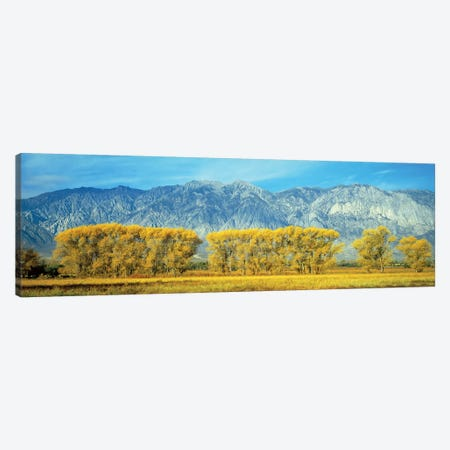 Autumn Landscape, U.S. Route 395, Sierra Nevada Range, California, USA Canvas Print #PIM14102} by Panoramic Images Canvas Art