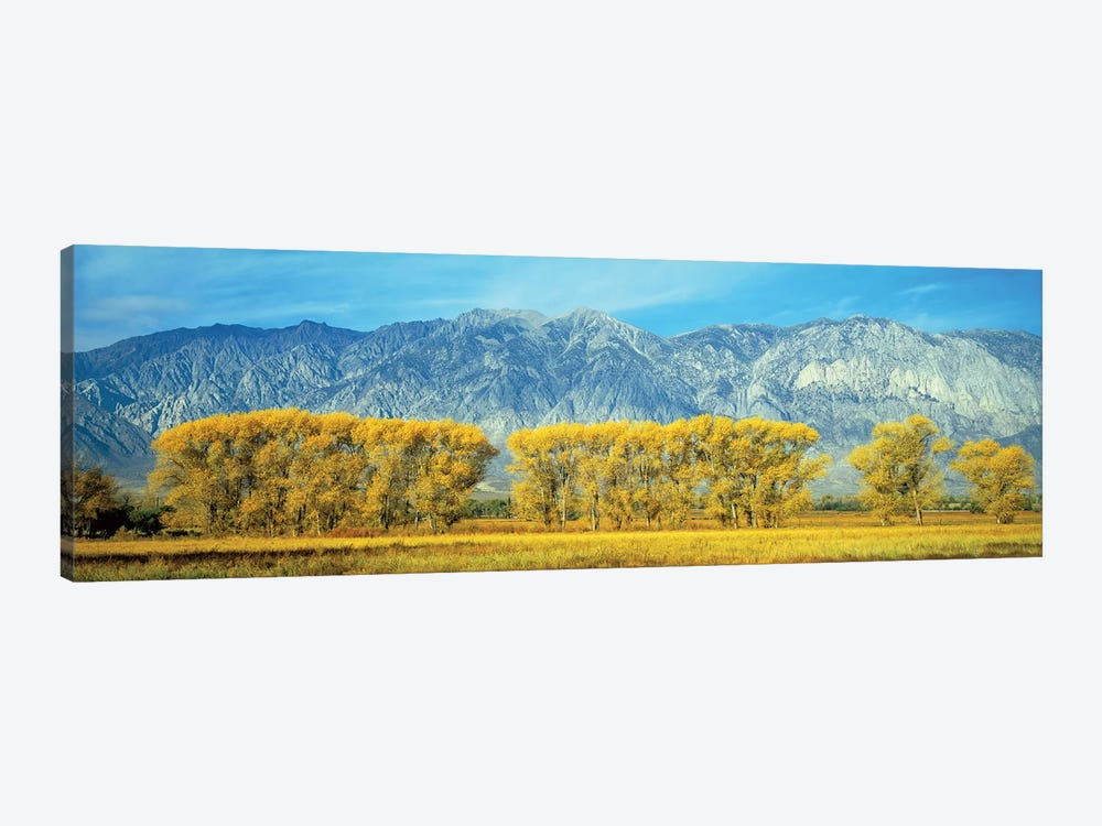 Autumn Landscape, U.S. Route 395, Sierra Nevada Range, California, USA by Panoramic Images 1-piece Canvas Print
