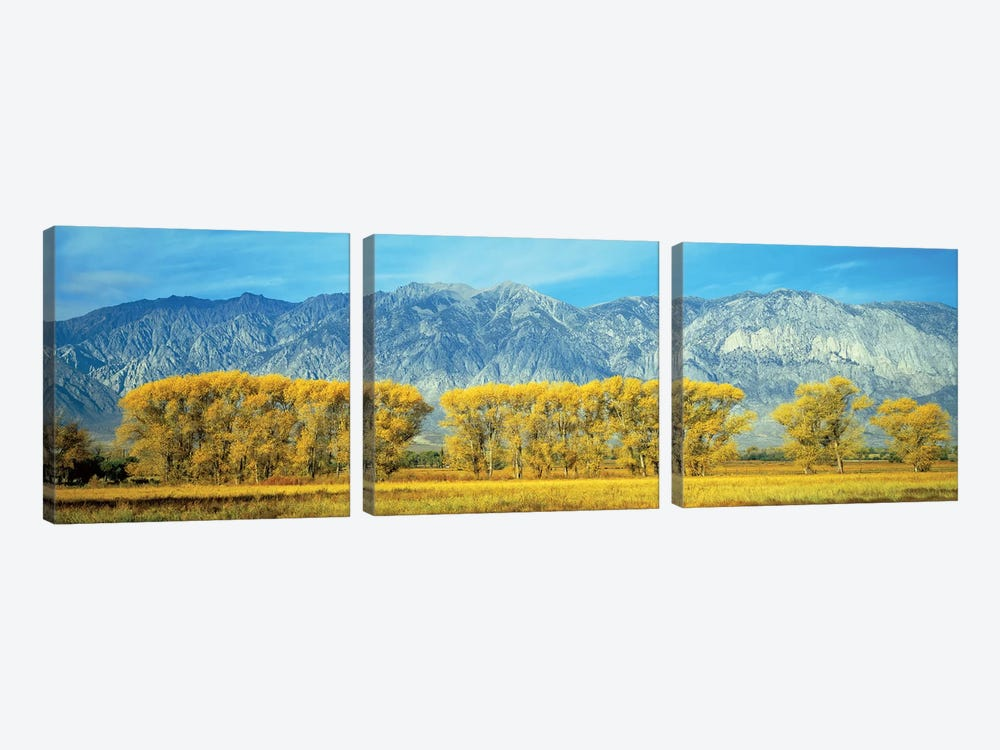Autumn Landscape, U.S. Route 395, Sierra Nevada Range, California, USA 3-piece Canvas Print