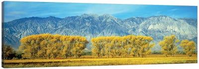 Autumn Landscape, U.S. Route 395, Sierra Nevada Range, California, USA Canvas Art Print
