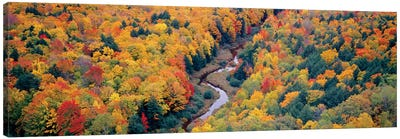 Autumn Landscape I, Porcupine Mountains Wilderness State Park, Upper Peninsula, Michigan, USA Canvas Print #PIM14104