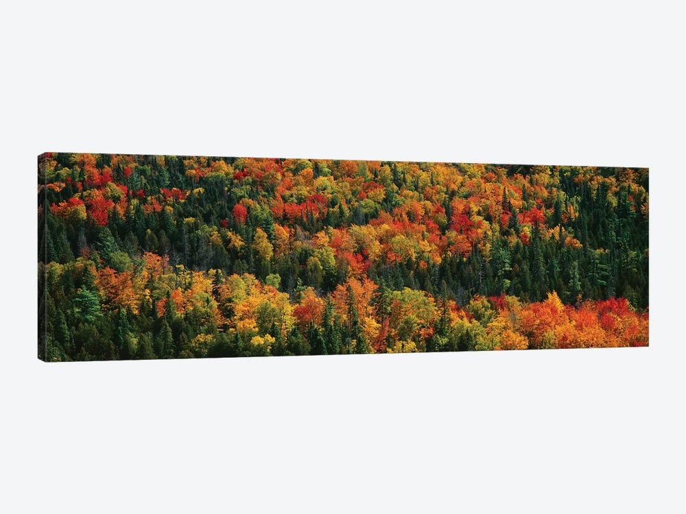 Autumn Landscape II, Porcupine Mountains Wilderness State Park, Upper Peninsula, Michigan, USA by Panoramic Images 1-piece Canvas Artwork