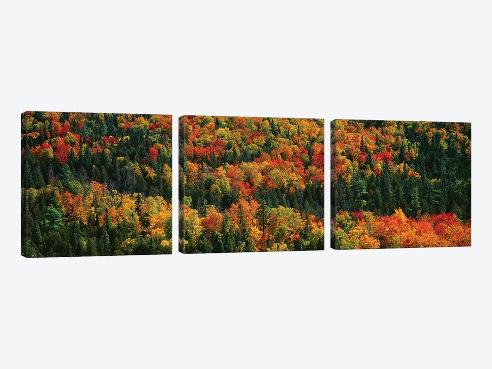 Autumn Landscape II, Porcupine Mountains Wilderness State Park, Upper Peninsula, Michigan, USA by Panoramic Images 3-piece Canvas Artwork
