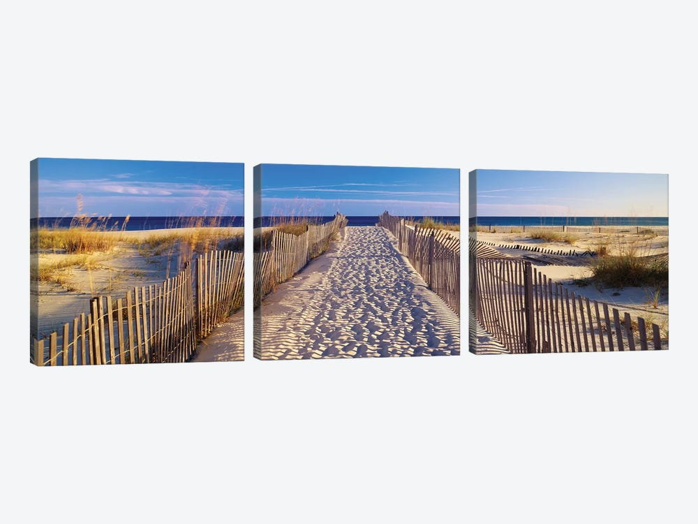 Beach Pathway, Santa Rosa Island, Florida, USA by Panoramic Images 3-piece Canvas Art Print