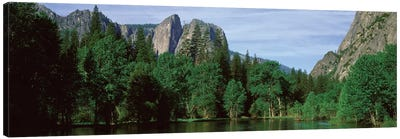 Spring Landscape, Yosemite National Park, California, USA Canvas Art Print