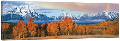 Autumn Landscape II, Teton Range, Rocky Mountains, Oxbow Bend, Wyoming, USA Canvas Art Print