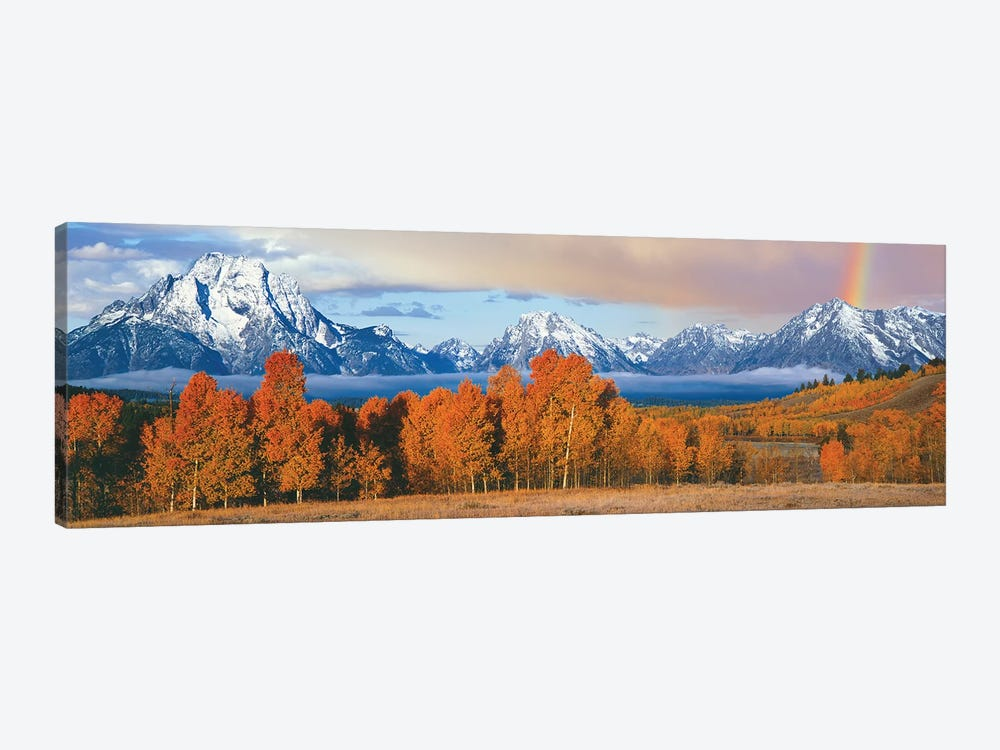Autumn Landscape II, Teton Range, Rocky Mountains, Oxbow Bend, Wyoming, USA by Panoramic Images 1-piece Canvas Art