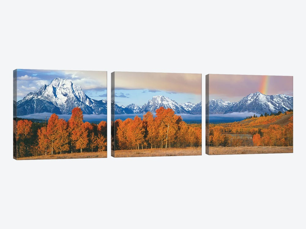 Autumn Landscape II, Teton Range, Rocky Mountains, Oxbow Bend, Wyoming, USA by Panoramic Images 3-piece Canvas Artwork