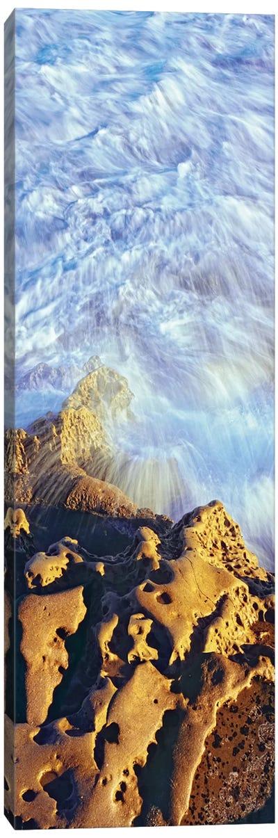 Coastal Rock Formations, Bird Rock, La Jolla, San Diego, San Diego County, California, USA Canvas Print #PIM14153