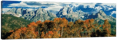 Autumn Landscape, Teton Range, Rocky Mountains, Grand Teton National Park, Wyoming, USA Canvas Art Print