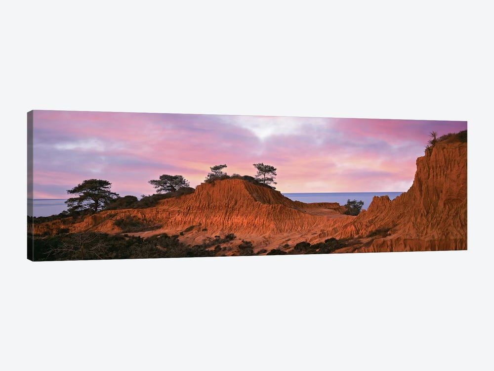 Broken Hill, Torrey Pines State Natural Reserve, La Jolla, San Diego, California, USA by Panoramic Images 1-piece Canvas Print