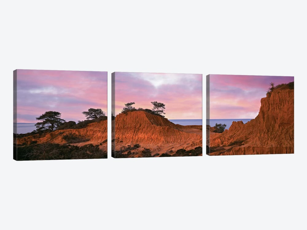 Broken Hill, Torrey Pines State Natural Reserve, La Jolla, San Diego, California, USA by Panoramic Images 3-piece Art Print