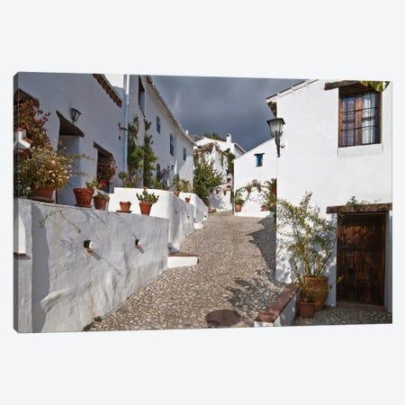 The Lost Village of El Acebuchal (Pueblo el Fantasmas) VII, Axarquia Comarca, Malaga Province, Spain Canvas Print #PIM14174} by Panoramic Images Canvas Artwork