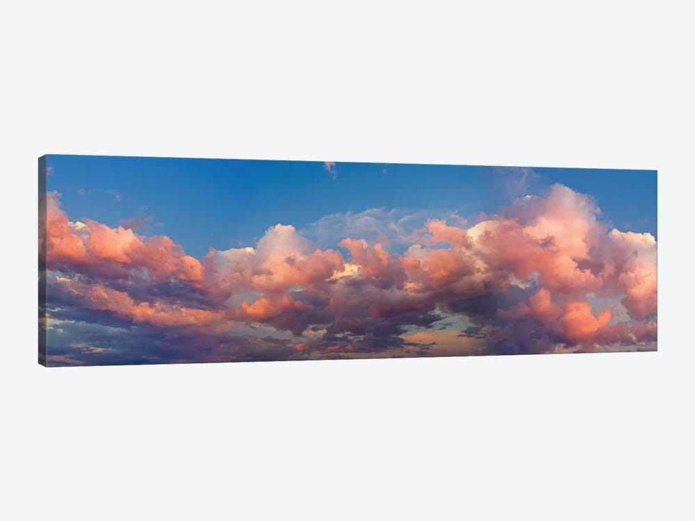 A Cloudy Day by Panoramic Images 1-piece Canvas Art Print