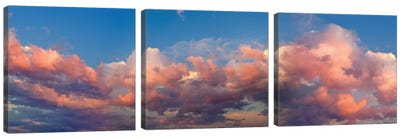 A Cloudy Day Canvas Art Print