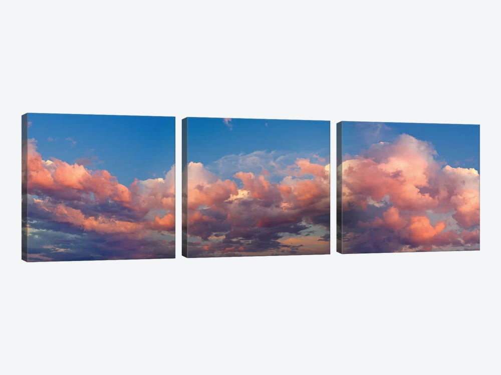 A Cloudy Day by Panoramic Images 3-piece Art Print