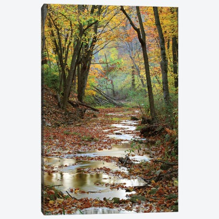 Autumn Landscape, Schuster Hollow, Grant County, Wisconsin, USA Canvas Print #PIM14194} by Panoramic Images Canvas Wall Art