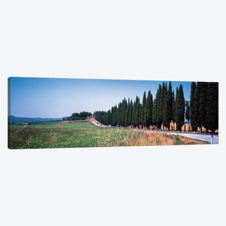Countryside Landscape I, Torrita di Siena, Siena Province, Tuscany Region, Italy Canvas Print #PIM14197} by Panoramic Images Canvas Art