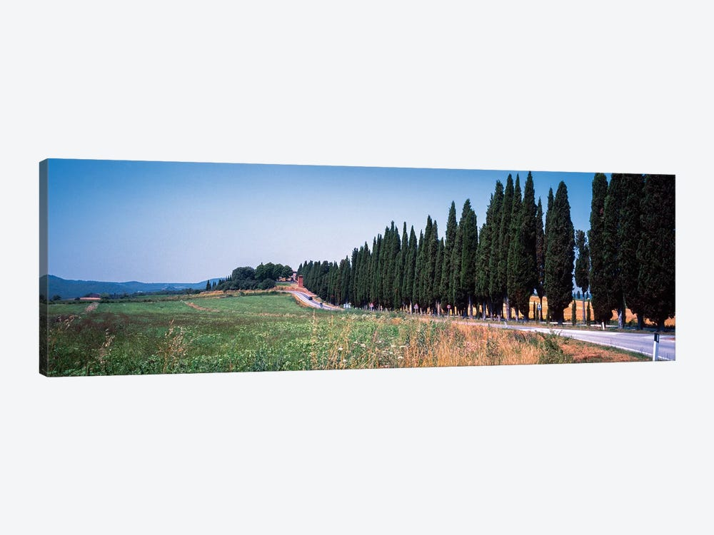 Countryside Landscape I, Torrita di Siena, Siena Province, Tuscany Region, Italy by Panoramic Images 1-piece Canvas Art Print