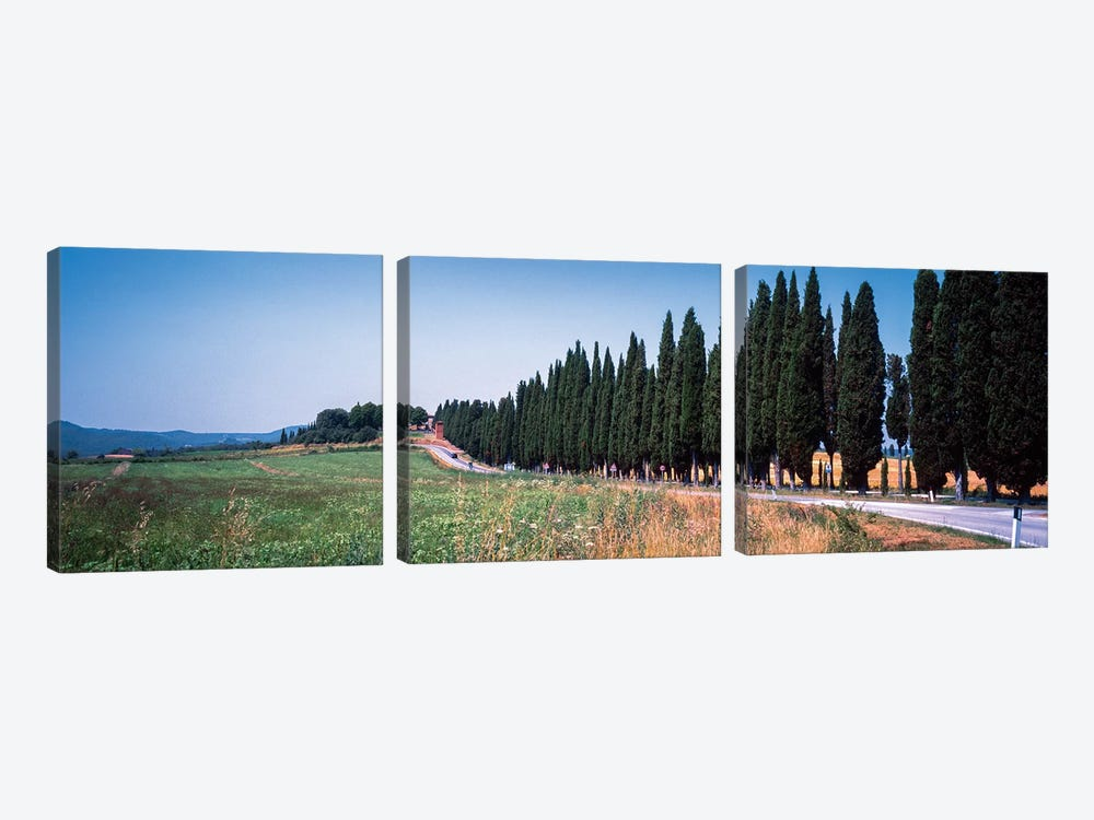 Countryside Landscape I, Torrita di Siena, Siena Province, Tuscany Region, Italy by Panoramic Images 3-piece Art Print