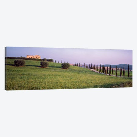 Countryside Landscape, Pienza, Siena Province, Tuscany Region, Italy Canvas Print #PIM14200} by Panoramic Images Canvas Print