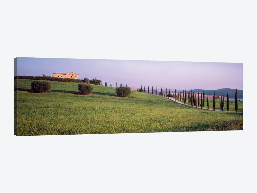 Countryside Landscape, Pienza, Siena Province, Tuscany Region, Italy by Panoramic Images 1-piece Canvas Print