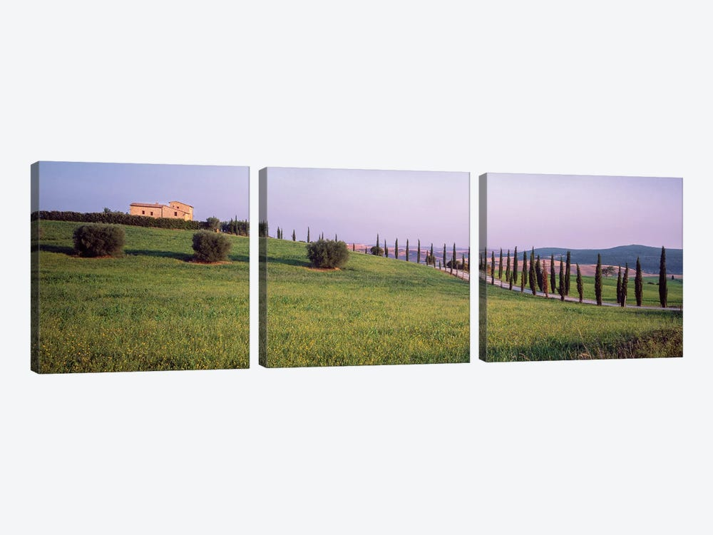 Countryside Landscape, Pienza, Siena Province, Tuscany Region, Italy by Panoramic Images 3-piece Canvas Print