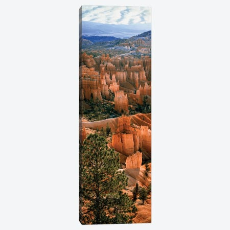 Hoodoos, Bryce Canyon Amphitheater, Bryce Canyon National Park, Utah, USA Canvas Print #PIM14202} by Panoramic Images Canvas Print