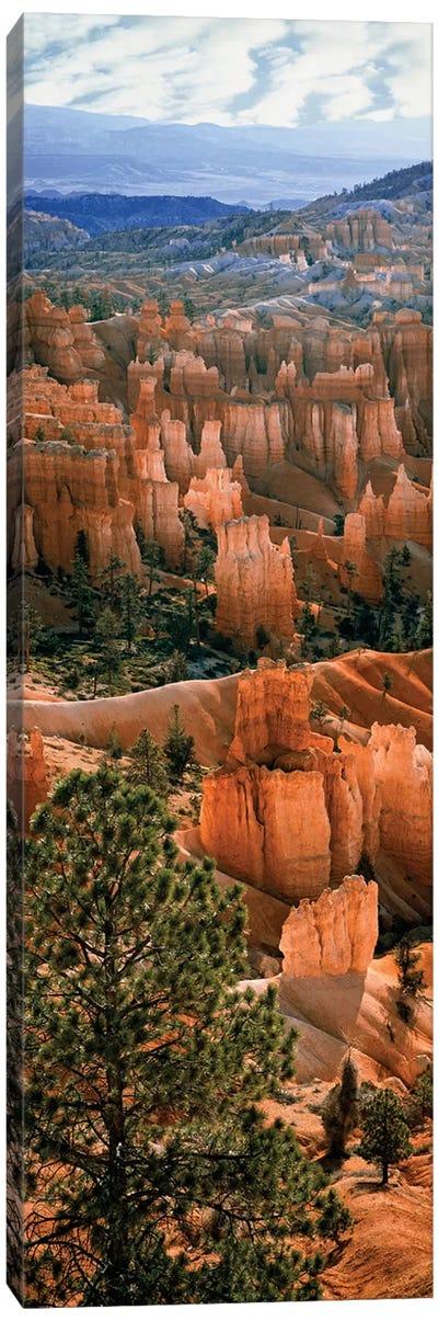 Hoodoos, Bryce Canyon Amphitheater, Bryce Canyon National Park, Utah, USA Canvas Art Print