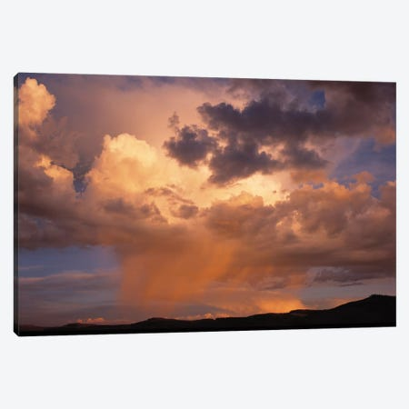 Summer Sky, Colorado, USA Canvas Print #PIM14207} by Panoramic Images Canvas Art
