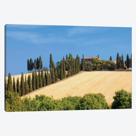 Countryside Landscape I, Tuscany Region, Italy Canvas Print #PIM14215} by Panoramic Images Art Print