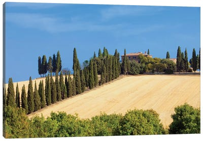 Countryside Landscape I, Tuscany Region, Italy Canvas Art Print