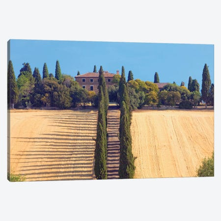 Countryside Landscape II, Tuscany Region, Italy Canvas Print #PIM14216} by Panoramic Images Art Print