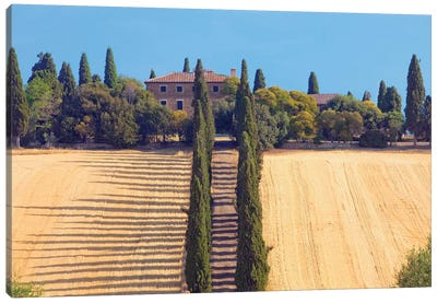 Countryside Landscape II, Tuscany Region, Italy Canvas Art Print