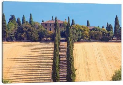 Countryside Landscape II, Tuscany Region, Italy Canvas Art Print