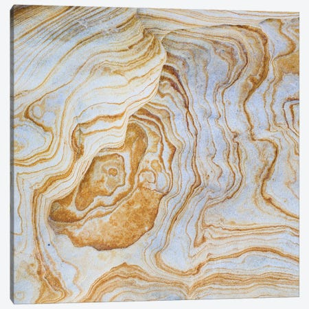 Sandstone Swirl Pattern II, Grand Staircase-Escalante National Monument, Utah, USA Canvas Print #PIM14225} by Panoramic Images Canvas Wall Art