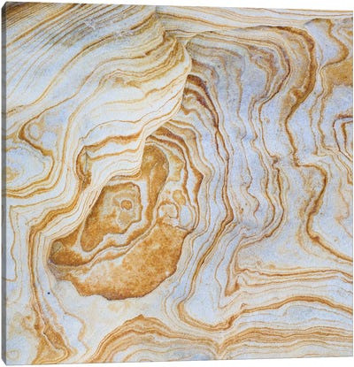 Sandstone Swirl Pattern II, Grand Staircase-Escalante National Monument, Utah, USA Canvas Art Print