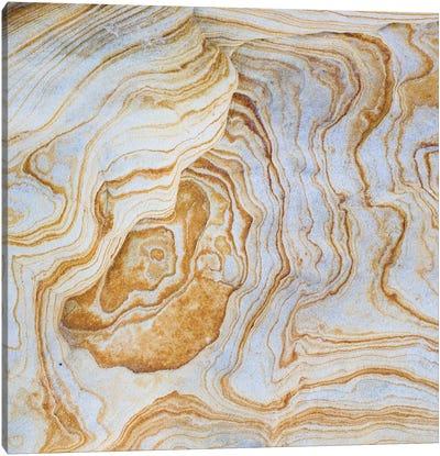 Sandstone Swirl Pattern II, Grand Staircase-Escalante National Monument, Utah, USA Canvas Art Print